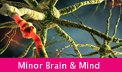 Minor Brain and Mind
