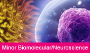 Minor Biomolecular/Neurosciences